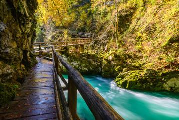 Vintgar gorge and wooden path near Bled, Slovenia