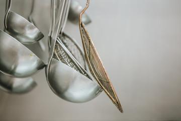 Aluminum appliance on kitchen