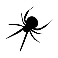 Spider Silhouette Icon Symbol Design. Vector illustration of spider isolated on white background. Halloween graphic.