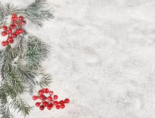 Winter background - snow, natural fir tree, cranberries
