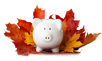 piggy bank in autumn leaves