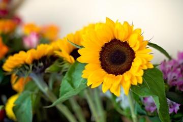 Beautiful bouquet of yellow sunflowers