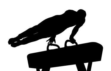 pomme horse exercise athlete gymnast black silhouette