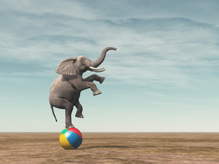 Surreal image of an elefant balancing