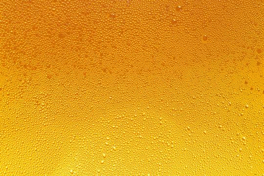 Condensation on beer bottle