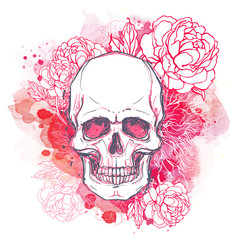 Tuinposter Aquarel schedel Human skull with peony, rose and poppy flowers on watercolor background.Tattoo design element. Vector illustration.
