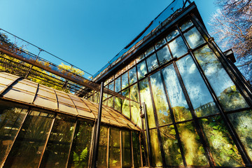 Classic glass greenhouse seen from below
