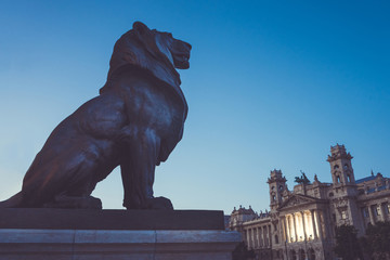 Lion in front of Budapest parliament in Hungary