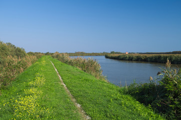 Foto auf Leinwand Fluss View of one of the channel of the Delta of Po river near the Adriatic sea not far from Goro village, Ferrara, Italy
