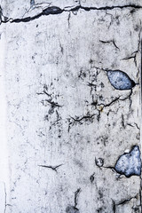 Decayed Cracked Paint Close Up