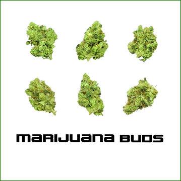 Marijuana Buds Vector Set 3