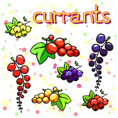 Collection of cartoon juicy currant. fruits and berry. Vector illustration. Set of colorful currant icons. Isolated on white. Fruit web icon hand drawn in doodle style. On watercolor drops background