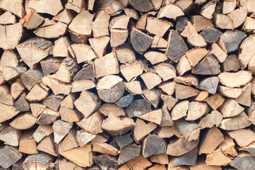 Poster Firewood texture Stacked firewood