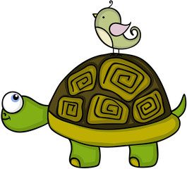 Cute turtle with bird