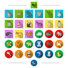 Ecology, protection, birds and other web icon in cartoon style. Exotic, zoo, safari, icons in set collection.