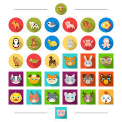 Reserve, sea, ecology and other web icon in cartoon style. Birds, nature, zoo, icons in set collection.