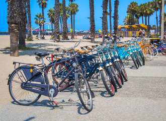 A row of bikes parked near Palm Beach, CA
