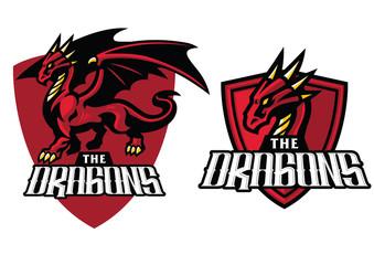 dragon mascot in set