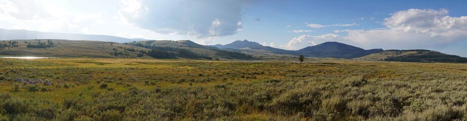 Yellowstone National park at sunrise