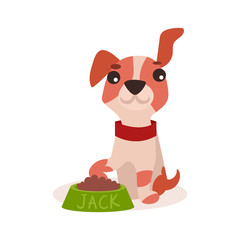 Jack russell terrier character eating food, cute funny dog vector Illustration