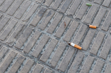 Tobacco cigarette lying on the floor