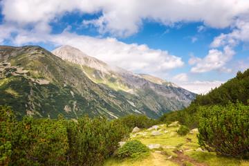 Pirin mountains / Magnificent summer morning view of Pirin Mountains