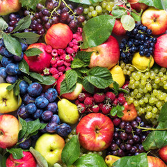 Assortment Organic Fruits Berries Country Concept