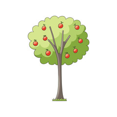 vector flat cartoon red apples on apple tree with green foliage and plentiful fruitage. Isolated illustration on a white background. Popular garden plant for your design
