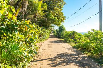 The Vijaya Road leads along the Medaketiya beach and runs to the Rekawa lagoon in the east of Tangalle.