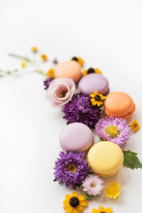 Colorful macarons, flowers and leaves on a white background. Colorful french dessert with fresh flowers. Autumn concept