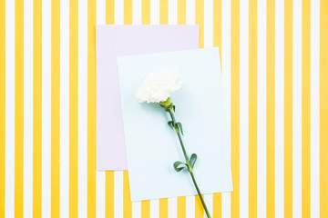 White flower on blank card