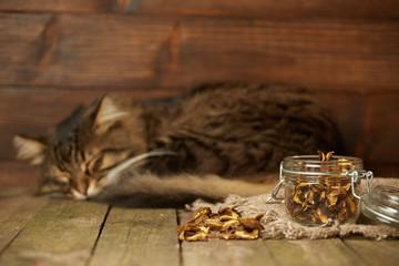 Dry mushrooms in the jar with sleeping cat behind