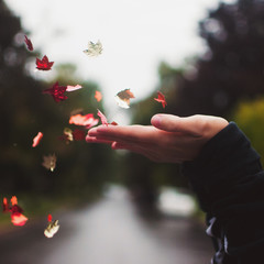 A young woman blowing leaf shaped confetti