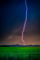 Thunderstorm with lightning in green meadow. Nature composition