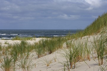 Sand dune with view of the North Sea, Juist Island, Lower Saxony, Germany, Europe