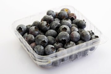 Blueberries in a plastic storage container