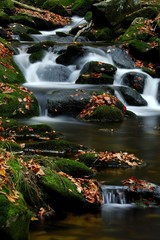 Moss-covered rocks in a mountain stream, Bayerischer Wald (Bavarian Forest), Bavaria, Germany, Europe