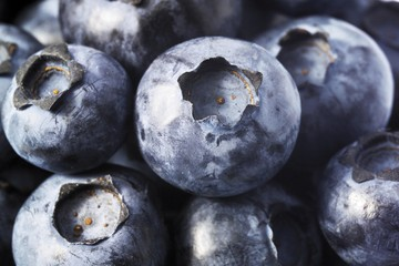 Blueberries, image-filling
