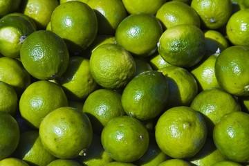 Limes (Citrus x aurantiifolia)