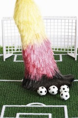 End of the season: broom with German national colours sweeping footballs from the football pitch