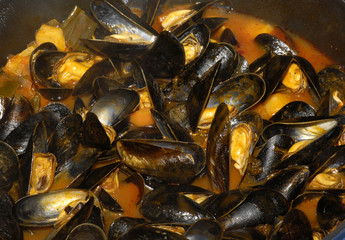 Boiling blue mussels