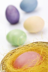 Pastel-coloured Easter eggs, nest