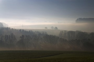 Early-morning fog near Biberach an der Riss, Swabia, Baden-Wuerttemberg, Germany, Europe