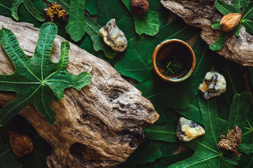 Fig Leaves with Wood and Stones