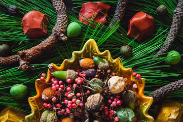 Assorted Specimen on Pine