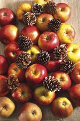 Apples and pine cones