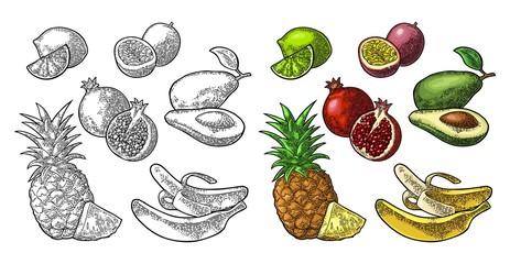 Set tropical fruits. Pineapple, lime, banana, pomegranate, maracuya, avocado.
