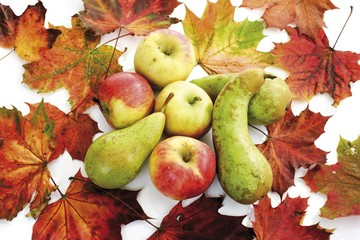 Apples and pears with colourful autumn leaves