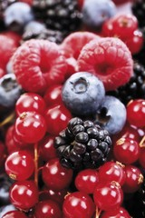 Mixed forest berries, blueberries, raspberries, blackberries, red currants
