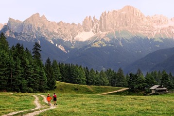 Two women hiking on a path leading through a meadow in the evening, Rosengarten Alps in the background, Bolzano-Bozen, Italy, Europe